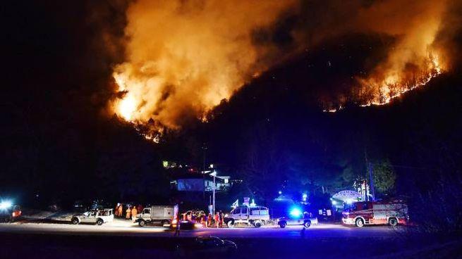 L'incendio boschivo sul Monte Martica