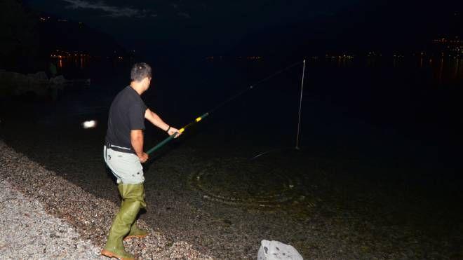 Un pescatore sul lago