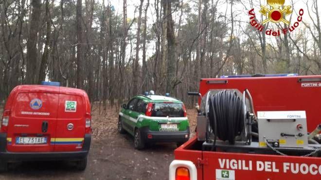 I vigili del fuoco nel bosco del parco delle Groane
