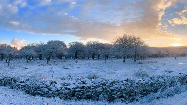Neve in Sardegna. Gelo in tutta Italia come annunciato dalle previsioni meteo (Ansa)