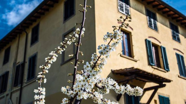 l'agriturismo in Toscana