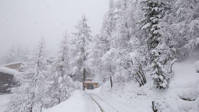 Previsioni meteo, neve sulle Alpi (Istock)