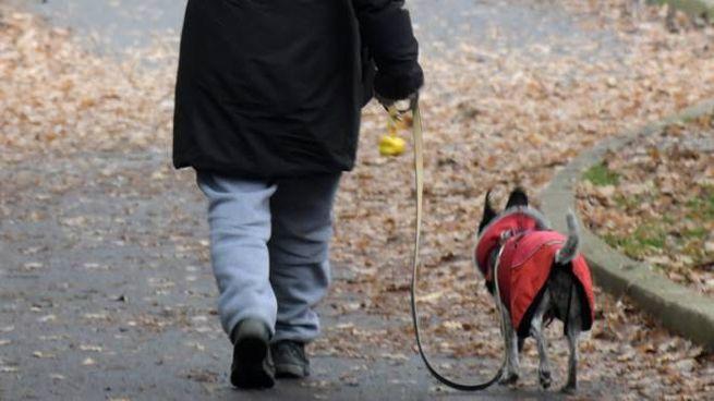 Una signora con il suo cane