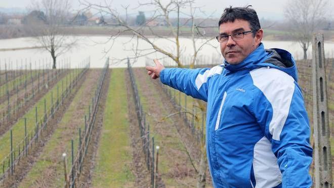 Piena Santerno, Bruno Gardi indica i terreni allagati dal Santerno (Isolapress)