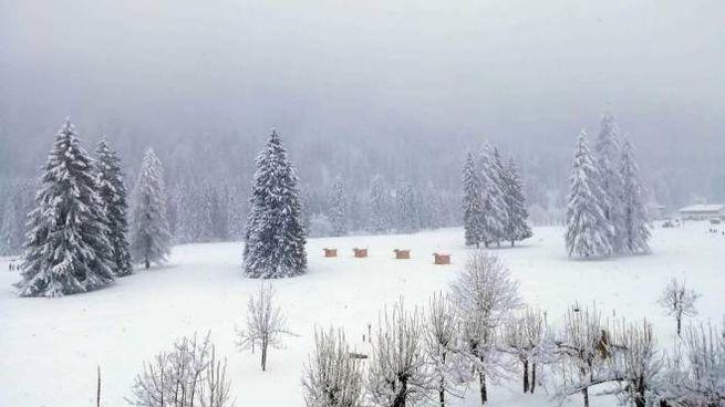 Meteo, l'ultima nevicata a Falcade, sulle Dolomiti bellunesi (Ansa)