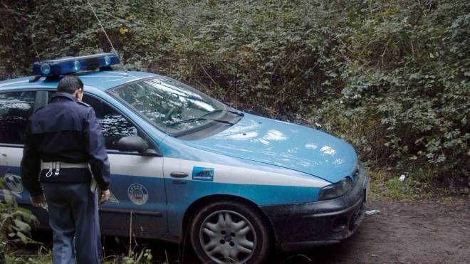 Controlli della polizia in pineta a Viareggio (Umicini)