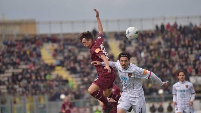 Giannetti durante Livorno-Cosenza