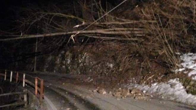 Sp 62 Taceno - Portone a Bellano è chiusa a causa di alcuni alberi caduti