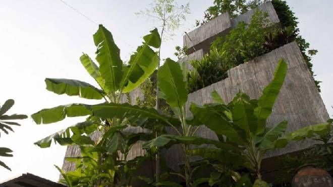 Planter Box House a Kuala Lumpur