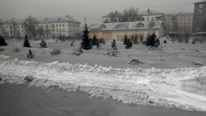 Neve nera in Siberia (Twitter @siberian_times)