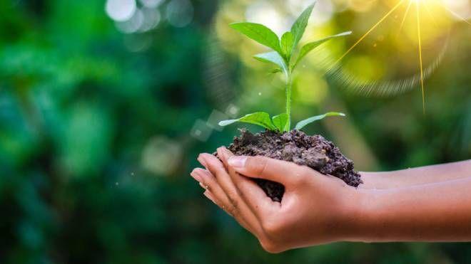 Agricoltura verde, una possibilità concreta
