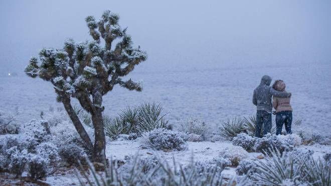 Tempesta di neve si abbatte sugli Stati Uniti. Anche a Los Angeles e Las Vegas (Ansa)