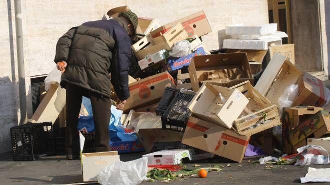 Scena di ordinaria povertà: anziano rovista tra gli avanzi di un mercato
