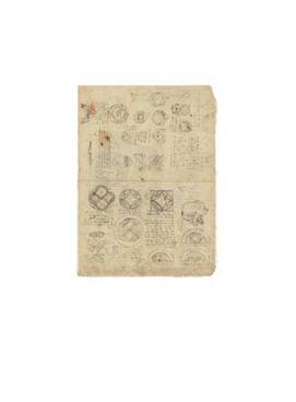 equivalenzA di superfici  e disegno di un Felino - Leonardo da Vinci - Codice Atlantico