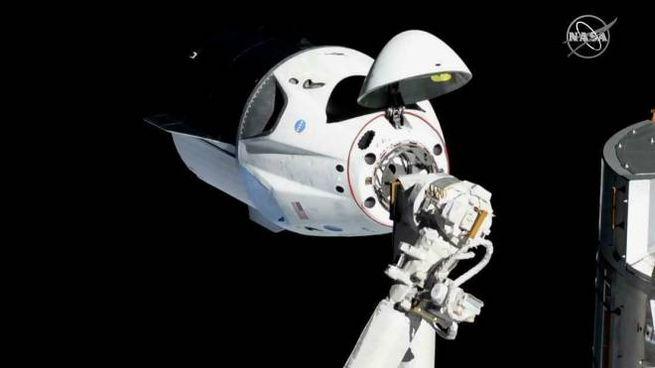 Il Crew Dragon della SpaceX (Ansa)