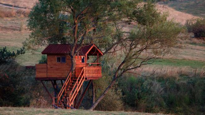 Dormire in una casa sull\'albero: le tree house più belle d ...