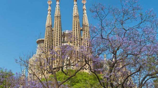 Barcellona in primavera