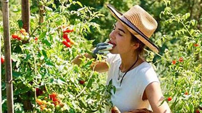 Grande preoccupazione per l'agricoltura in Garfagnana
