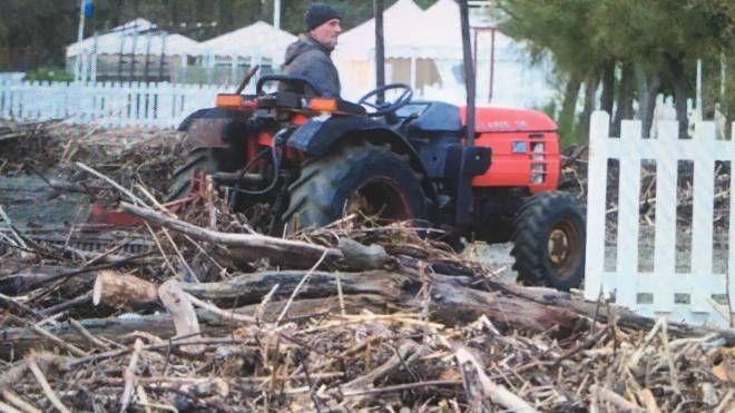 La legna che si deposita sulle spiagge (foto d'archivio)