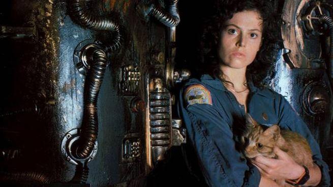 Una scena del film 'Alien' – Foto: 20th Century Fox