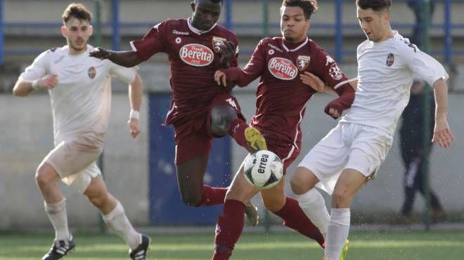 Viareggio Cup, il Torino passa il turno