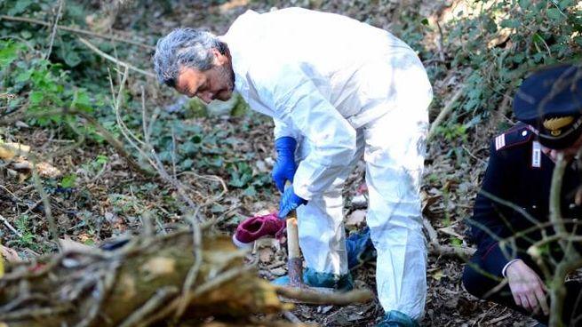 Il posto dove sono stati trovati i resti umani e la scarpa rosa (Businesspress)