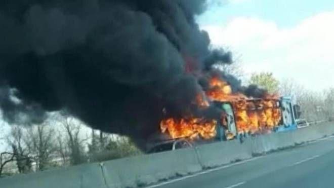 Il bus distrutto dal fuoco