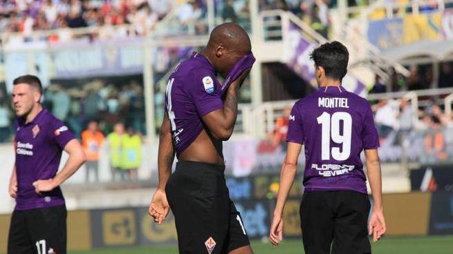 Fiorentina-Torino (foto Germogli)