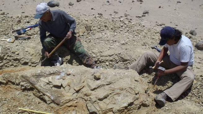 Gli scavi in Perù