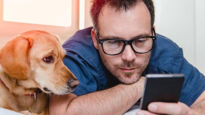 Le app che vi aiutano a prendervi cura del vostro cane