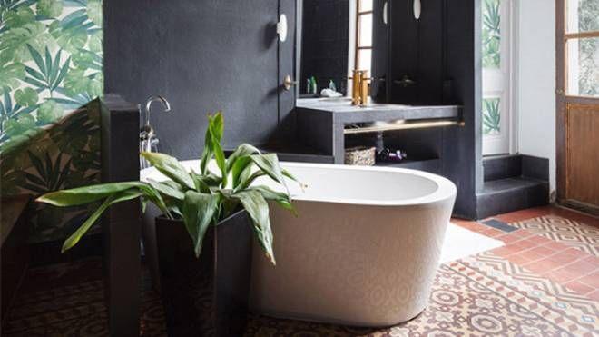 Piante perfette per l'ambiente bagno