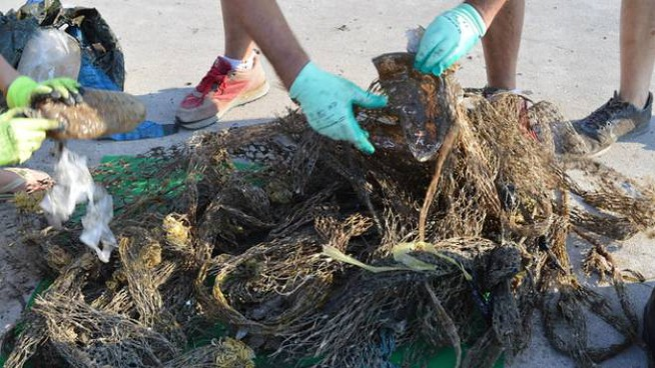 Rifiuti raccolti in mare dai volontari (Foto Dire)