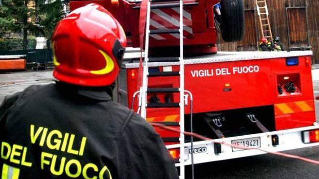 Vigili del fuoco (Foto Newpress)