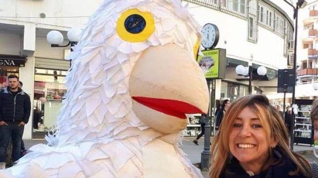 Gedeone, il gallo cedrone farà tappa a Lido degli Estensi domani pomeriggio.