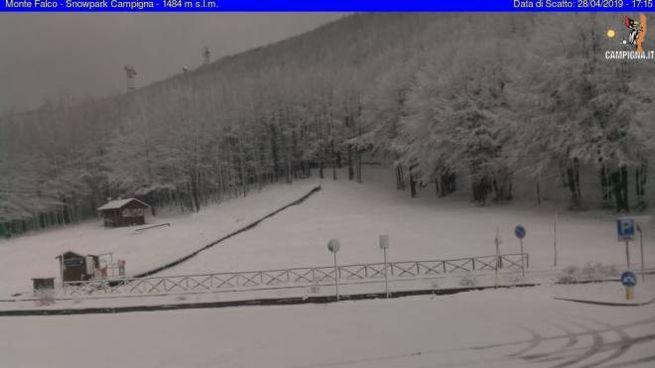 Una webcam del Casentino, dove è tornata la neve (webcamcampigna.it)