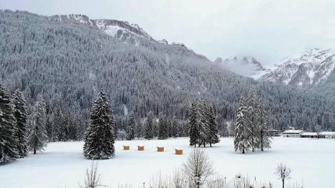 Neve a Falcade, sulle Dolomiti bellunesi (Ansa)