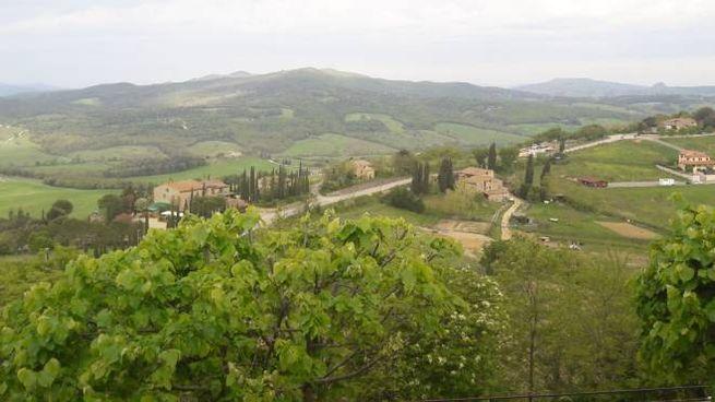 """Panorama dalle finestre de """"il Canto del Gallo"""", Casole D'Elsa"""