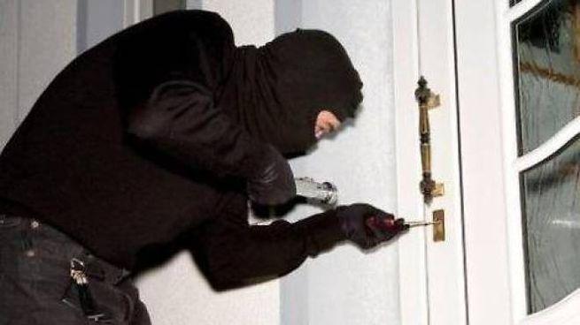 Ladri in azione (foto di repertorio)
