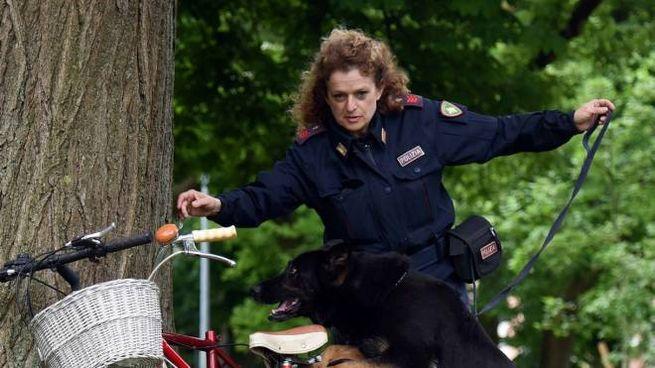 Ferrara, sequestrati quintali di droga: i controlli della polizia (foto Businesspress)