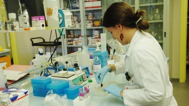 West Nile, una ricercatrice in laboratorio (foto di repertorio Newpress)