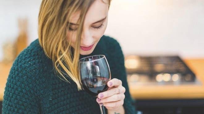 """""""Trentino & Wine"""""""