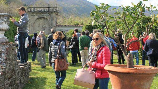 Un giardino pontremolese che domenica sarà possibile visitare