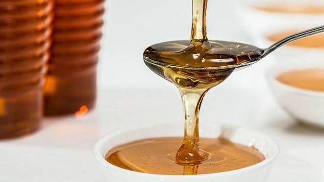 Miele di corbezzolo contro il cancro al colon
