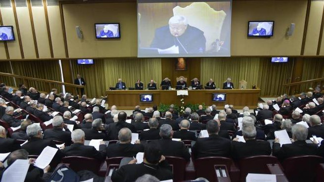 L'assemblea generale della Cei (Ansa)