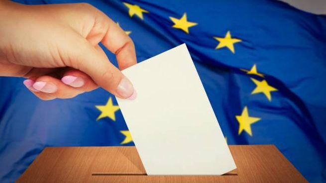 Elezioni europee 2019 (Foto iStock)