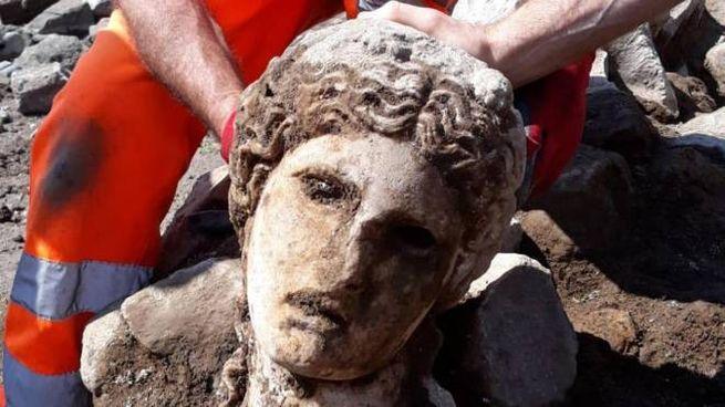 La testa marmorea ritrovata al Foro romano (Ansa)