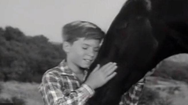 Bobby Diamond in un frame del telefilm 'Furia'