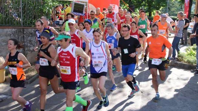 La corsa di San Mommè (foto Regalami un sorriso onlus)
