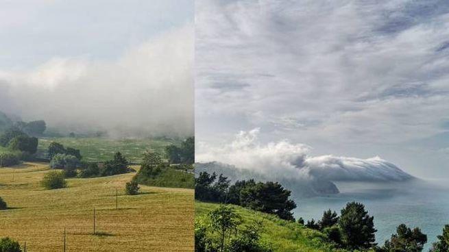 Nebbia ad Ancona (foto di Claudia Gaberscik)