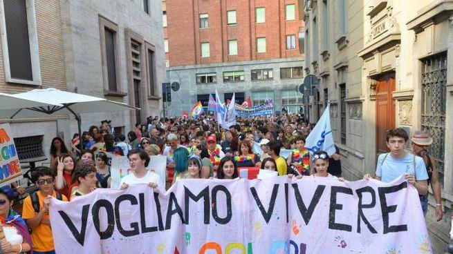 Il gay pride di Varese (Newpress)